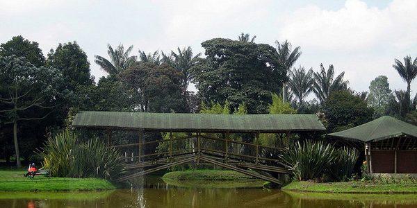 bogota-jardin-botanico-colombian-women